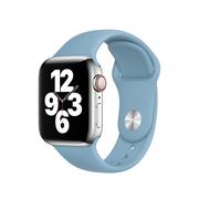 Apple pasek sportowy w kolorze północnego błękitu