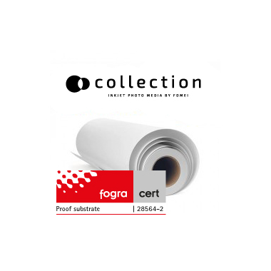 FOMEI COLLECTION GLOSS